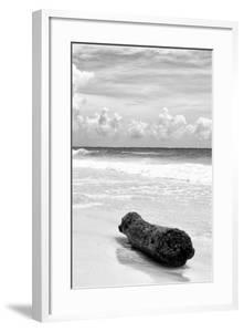 ?Viva Mexico! B&W Collection - Tree Trunk on a Caribbean Beach III by Philippe Hugonnard