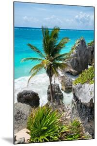 ?Viva Mexico! Collection - Caribbean Coastline by Philippe Hugonnard