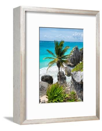 ¡Viva Mexico! Collection - Caribbean Coastline