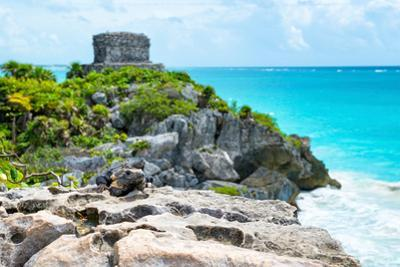 ¡Viva Mexico! Collection - Mayan Archaeological Site with Iguana II - Tulum by Philippe Hugonnard