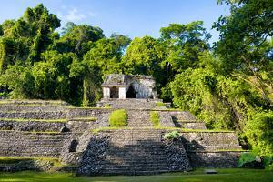 ¡Viva Mexico! Collection - Mayan Ruins in Palenque by Philippe Hugonnard