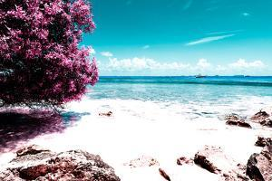 ¡Viva Mexico! Collection - Pink Caribbean Coastline - Isla Mujeres by Philippe Hugonnard