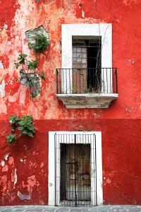 ¡Viva Mexico! Collection - Red Wall by Philippe Hugonnard