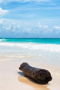 ¡Viva Mexico! Collection - Tree Trunk on a Caribbean Beach II by Philippe Hugonnard