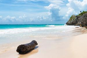?Viva Mexico! Collection - Tree Trunk on a Caribbean Beach by Philippe Hugonnard