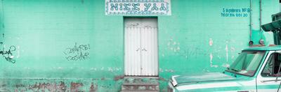 """¡Viva Mexico! Panoramic Collection - """"5 de febrero"""" Coral Green Wall"""
