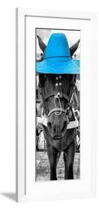 ¡Viva Mexico! Panoramic Collection - Horse with a Blue straw Hat by Philippe Hugonnard