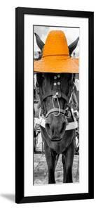 ¡Viva Mexico! Panoramic Collection - Horse with a Light Orange straw Hat by Philippe Hugonnard