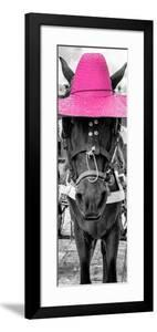 ¡Viva Mexico! Panoramic Collection - Horse with a Pink straw Hat by Philippe Hugonnard