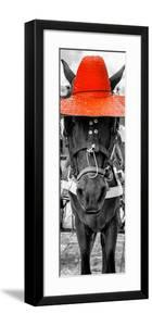 ¡Viva Mexico! Panoramic Collection - Horse with a Red straw Hat by Philippe Hugonnard