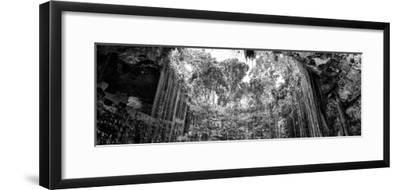 ¡Viva Mexico! Panoramic Collection - Ik-Kil Cenote II
