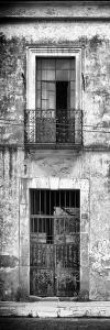 ?Viva Mexico! Panoramic Collection - Old Mexican Facade V by Philippe Hugonnard