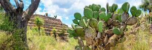 ¡Viva Mexico! Panoramic Collection - Pyramid of Cantona Archaeological Site III by Philippe Hugonnard