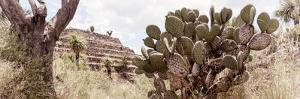 ¡Viva Mexico! Panoramic Collection - Pyramid of Cantona Archaeological Site IV by Philippe Hugonnard