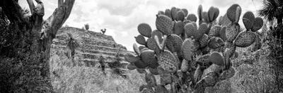 ¡Viva Mexico! Panoramic Collection - Pyramid of Cantona Archaeological Site V by Philippe Hugonnard