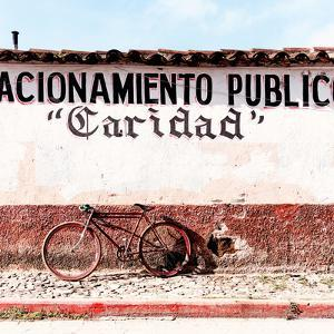 """¡Viva Mexico! Square Collection - """"Caridad"""" Red Bike II by Philippe Hugonnard"""