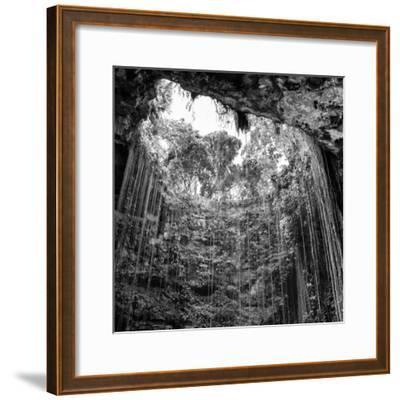 ¡Viva Mexico! Square Collection - Hanging Roots of Ik-Kil Cenote IV
