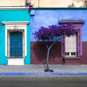 ¡Viva Mexico! Square Collection - Mexican Colorful Facades VI by Philippe Hugonnard