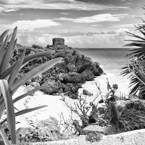 ¡Viva Mexico! Square Collection - Tulum Ruins along Caribbean Coastline with Iguana II by Philippe Hugonnard