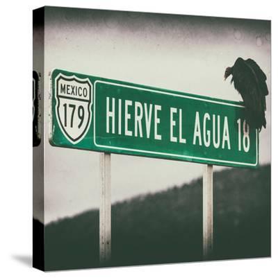 ¡Viva Mexico! Square Collection - Vulture III