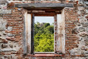 ¡Viva Mexico! Window View - Calakmul in the Mexican Jungle by Philippe Hugonnard
