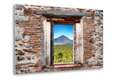 ¡Viva Mexico! Window View - Mexican Desert