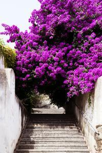 Welcome to Portugal Collection - Flowery Staircase by Philippe Hugonnard