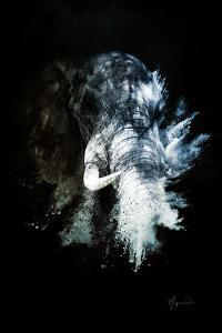 Wild Explosion Collection - The Elephant II by Philippe Hugonnard