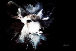 Wild Explosion Collection - The Impala II by Philippe Hugonnard