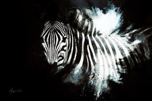 Wild Explosion Collection - The Zebra II by Philippe Hugonnard