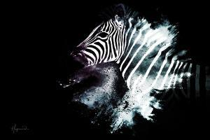 Wild Explosion Collection - The Zebra by Philippe Hugonnard