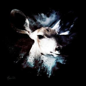 Wild Explosion Square Collection - The Impala II by Philippe Hugonnard