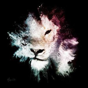 Wild Explosion Square Collection - The Lion by Philippe Hugonnard