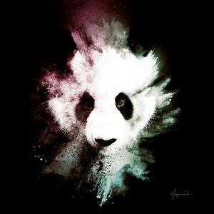 Wild Explosion Square Collection - The Panda by Philippe Hugonnard