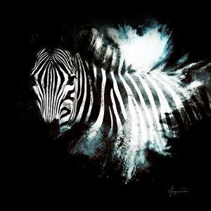 Wild Explosion Square Collection - The Zebra II by Philippe Hugonnard