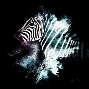 Wild Explosion Square Collection - The Zebra by Philippe Hugonnard