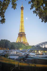 Eiffel tower green nature in Paris by Philippe Manguin