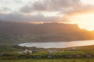 Sunset On Skye Island Grasslands, Scotland by Philippe Manguin
