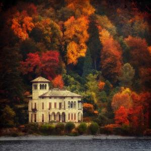Autumn in My Garden by Philippe Sainte-Laudy
