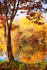 Autumn paint waterfront by Philippe Sainte-Laudy