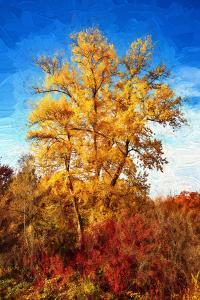 Autumnal Painting of a Tree by Philippe Sainte-Laudy