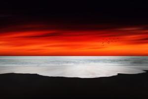 Beyond the Ocean by Philippe Sainte-Laudy
