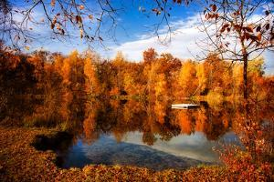 Breathing Autumn by Philippe Sainte-Laudy