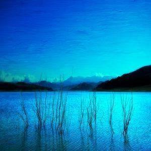 Composition in Blue by Philippe Sainte-Laudy
