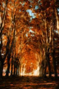 Dark Autumn Days by Philippe Sainte-Laudy
