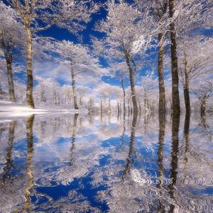 Dream in Blue by Philippe Sainte-Laudy