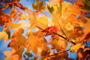 Fall Decorations by Philippe Sainte-Laudy
