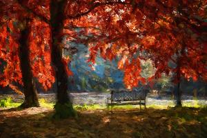 Fall Secret by Philippe Sainte-Laudy