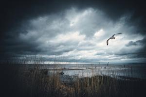 Goodbye, Again by Philippe Sainte-Laudy