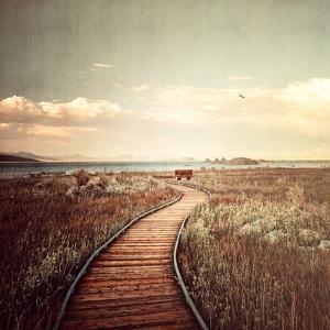 Mono Lake Pause by Philippe Sainte-Laudy